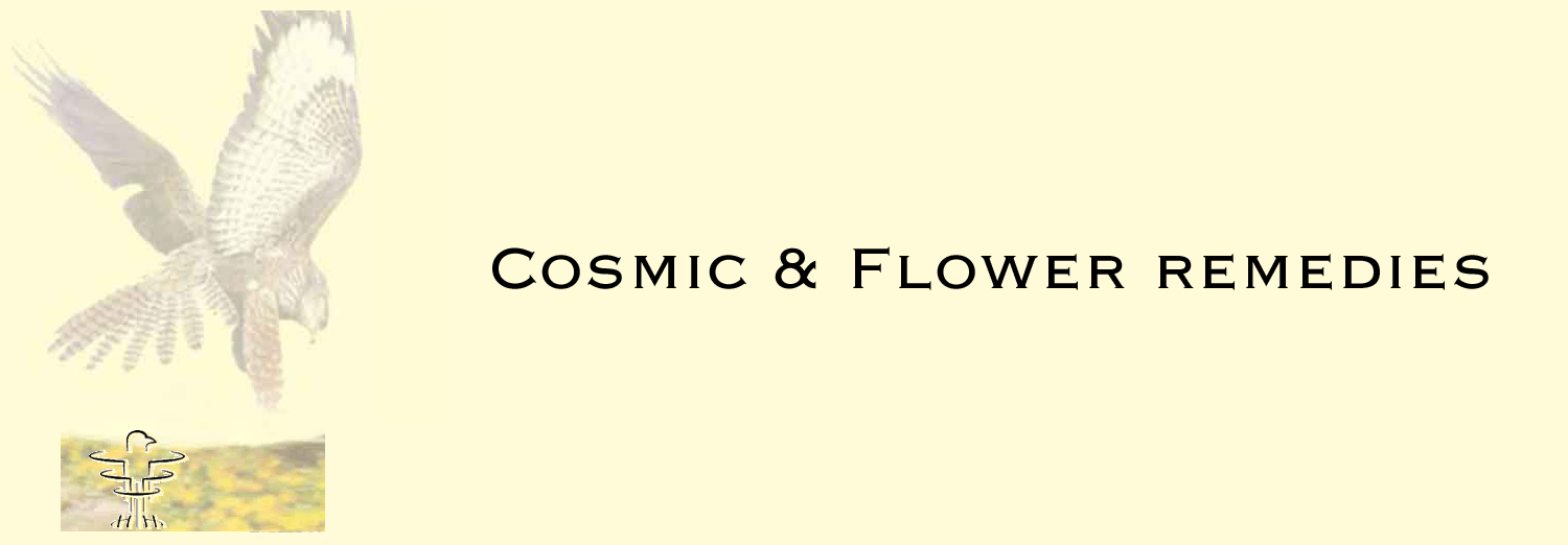 Cosmic_and_Flower_remedies_link